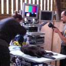 Beaver surgery and BBC's the One Show at Bamff