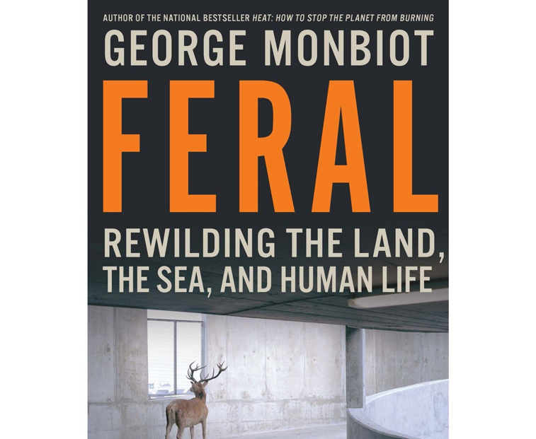 Book cover with title and deer in car park